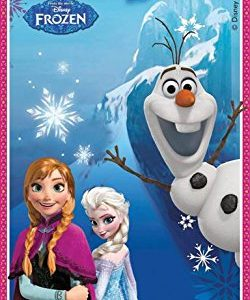 Disney-Frozen-Door-Banner-5ft-x-25ft-0