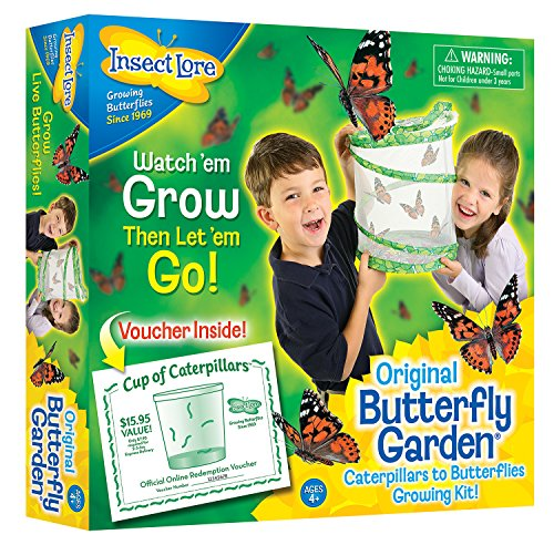 Insect-Lore-Butterfly-Garden-0