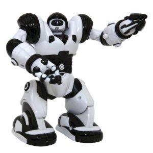 Mini-Robosapien-0