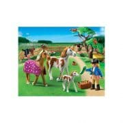 Playmobil-5227-Country-Pony-Farm-Paddock-with-Horses-and-Pony-0-2